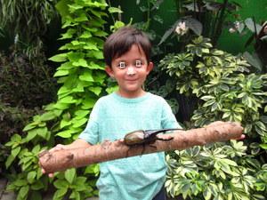 ヘラクレスオオカブトと一緒に写真を撮る子供